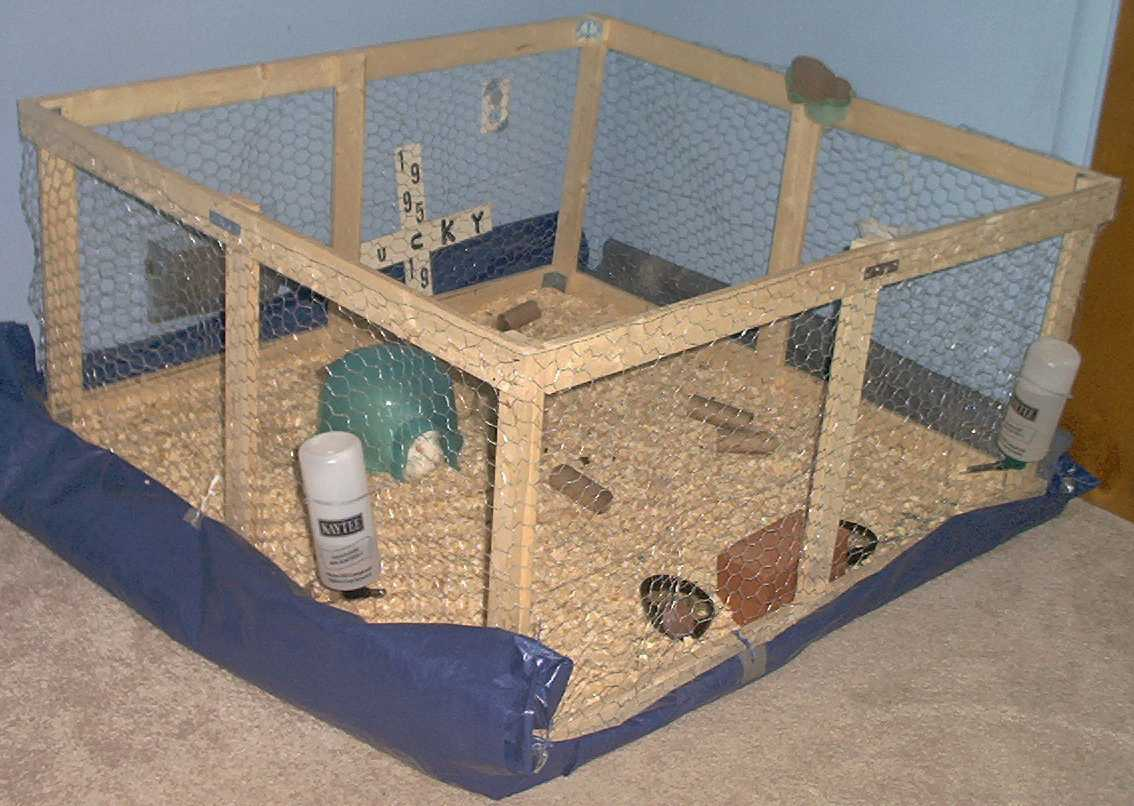 Guinea Pig Cage Diy Houses Plans Designs